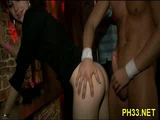 pornô, galo, foda duro