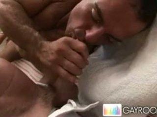 grande, galo, homossexual