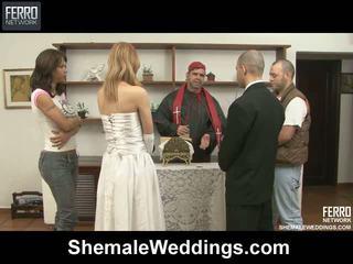 Alessandra tony shelady 婚禮 性別