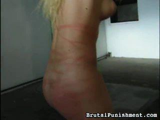 Gran colección de bdsm porno clips desde brutal punishment