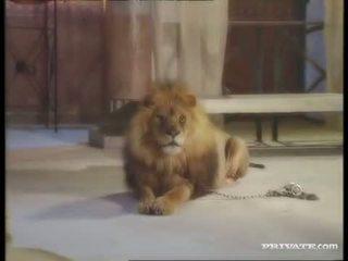 Gara widow, the roman and the lion