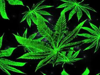 punk, smoke, weed