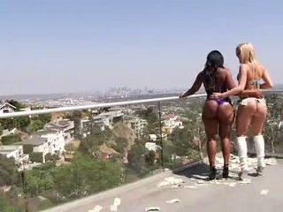 bbw, stripper, lesbian