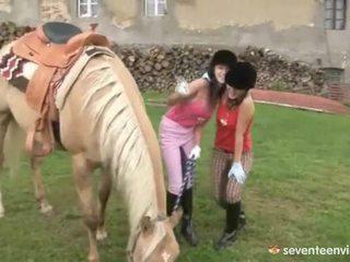 Fuckfest nál nél a stables