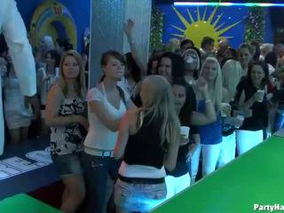 مص الديك, مجموعة الجنس, حزب