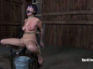 seks tegar, seks, penghinaan