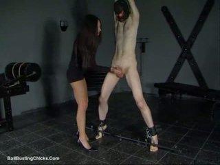 Slapping 公雞 和 ballbusting 陰莖及睪丸虐待