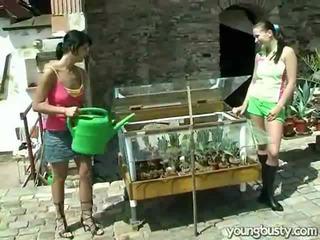 Homo naiset rakkaus sisäpuolella the puutarha