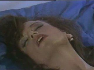 Tracey adams zrak erotika